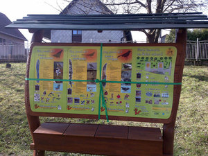 Ptačí tabule v MŠ Pražmo